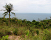 Land,For Sale,1002