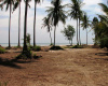 Land,For Sale,1006