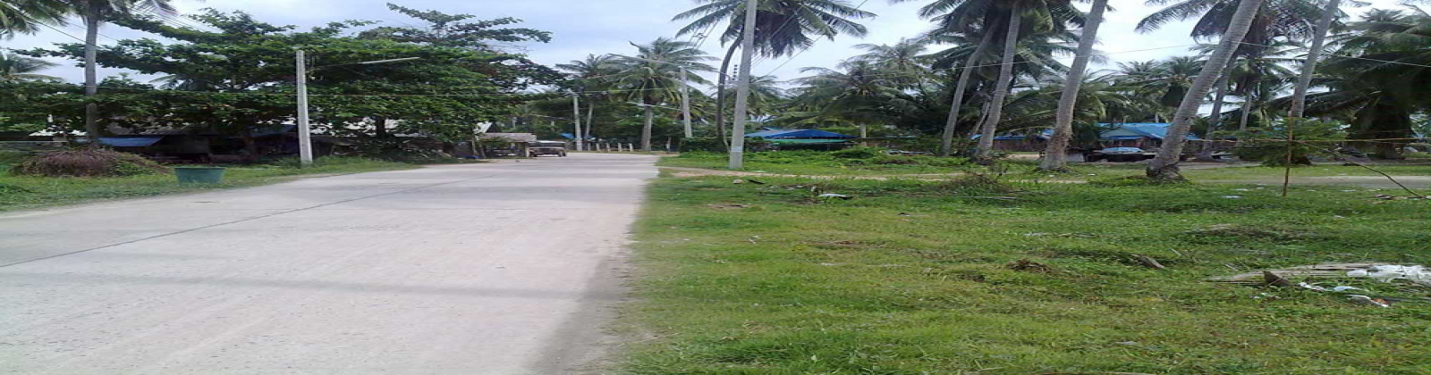 Land,For Sale,1009