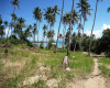 Land,For Sale,1012